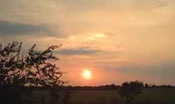 Austin Sun Raise